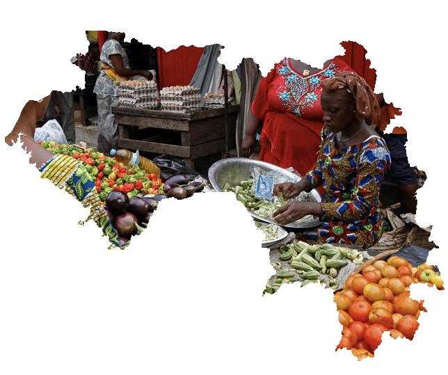 기니 온라인 전자 비자 신청