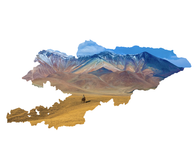 Application for online e-Visa for Kyrgyzstan
